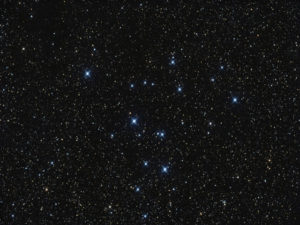 Swan Starcluster